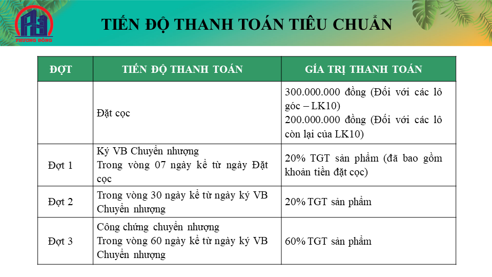 Tien do thanh toan 1